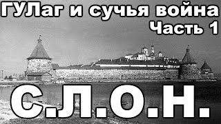 Соловецкий лагерь особого назначения (С.Л.О.Н.). С чего начинался ГУЛаг