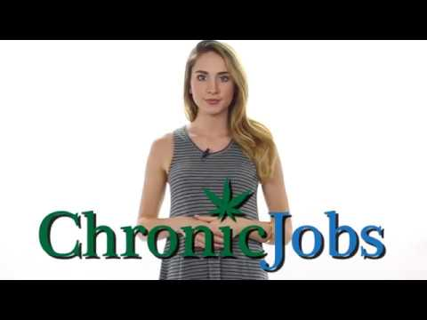 Panama City Cannabis Jobs