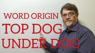 English Tutor Nick P Word Origins (69) Top Dog and Underdog