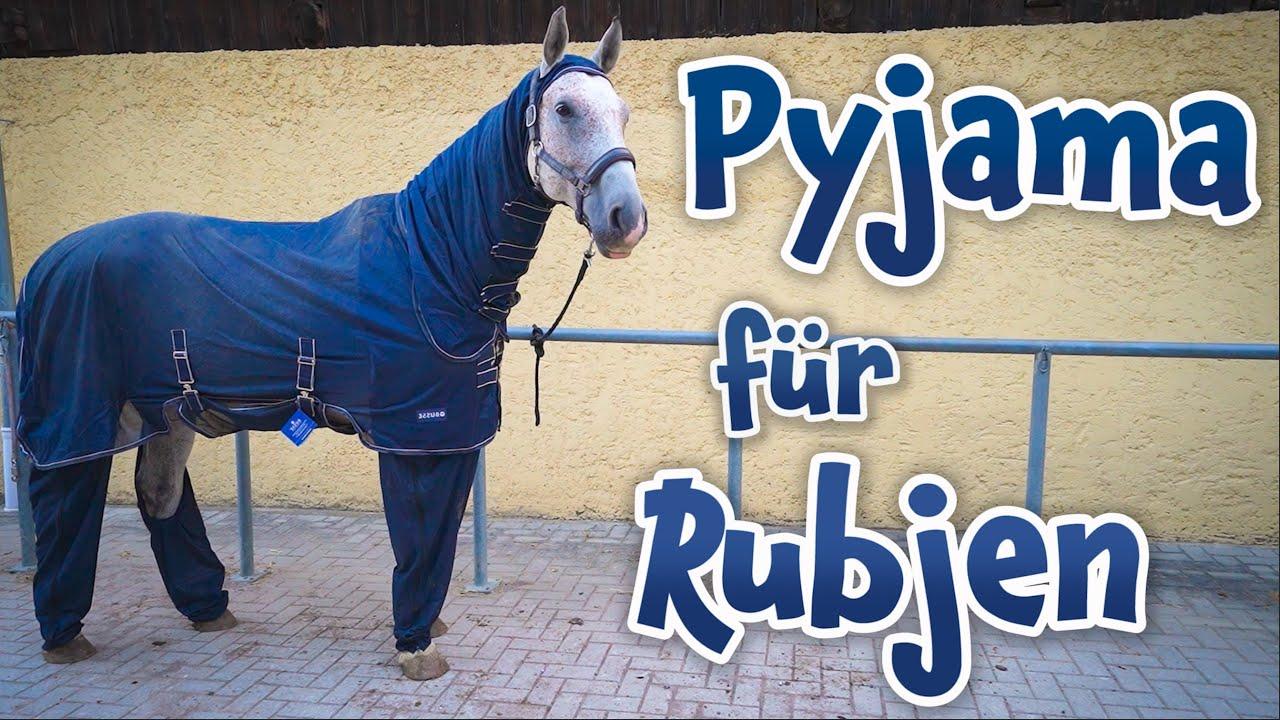 Hässliches Teil für Rubjen  I  Wie reagieren meine Pferde darauf?