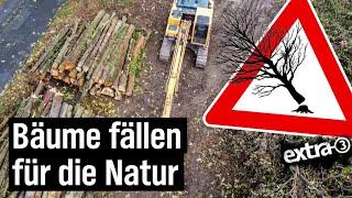Realer Irrsinn: Guter Baum oder schlechter Baum? Ordnung schaffen in der Natur von Duisburg