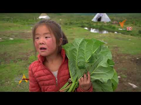 Spirit of Asia : Tsaatan , The reindeer tribe of Mongolia