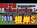 根岸ステークス 2018 競馬予想シミュレーション by StarHorsePocket(SEGA)