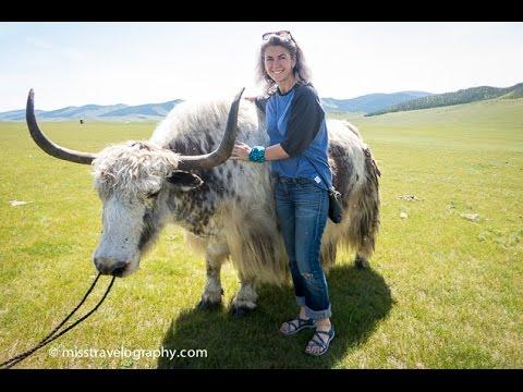 YAK FESTIVAL - ORKHON VALLEY, MONGOLIA