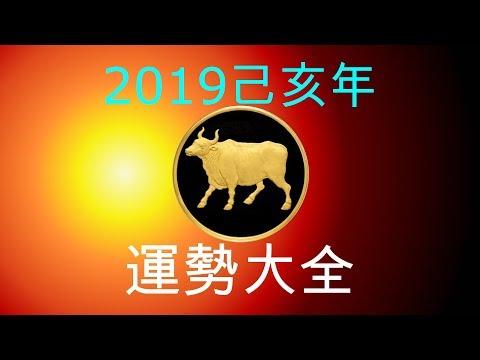 2019年己亥年運勢大合集:肖牛者