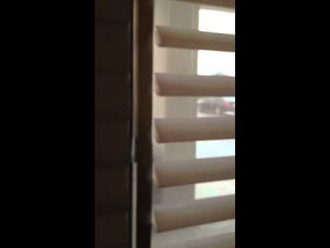 Hunter Douglas Pirouette Light Filtering Vs Room Darkening Shades