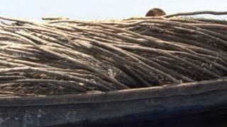 Рыболовные путешествия: Озеро Ильмень