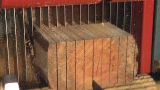 Amazing Automatic Multisaw Sawmilling Machinery Working, Timber Sawmill Machine Modern Technology