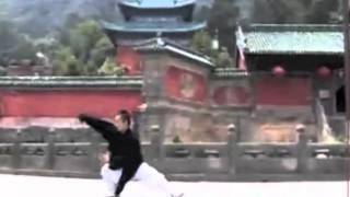 A Billion Bruce Lees!!!中国有多少功夫高手?.mov