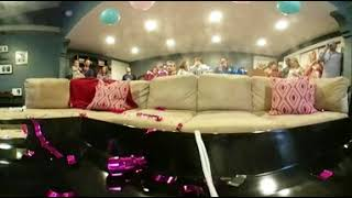 Twins Gender Reveal (360)