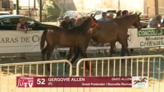 Decize 2016 : Lot 52 - Gergovie Allen