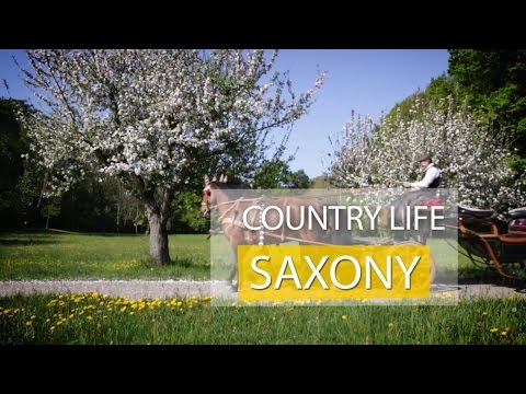 Country Life Saxony