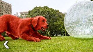 CLIFFORD THE BIG RËD DOG Movie Clip - No Fetch! (2021)