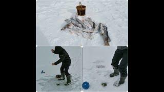 Зимняя рыбалка в Варварино