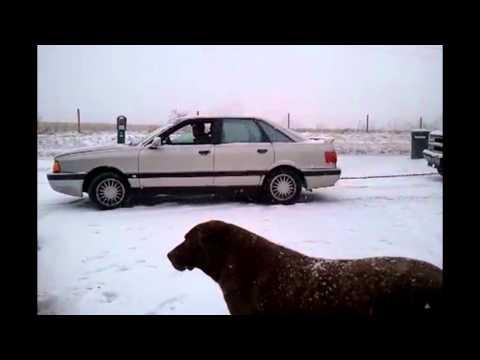 1988 audi 90 quattro diesel redneck car pull