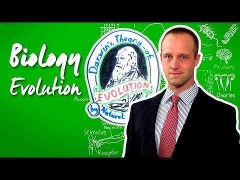 Evolution - Biology - Science - Get That C In Your GCSE