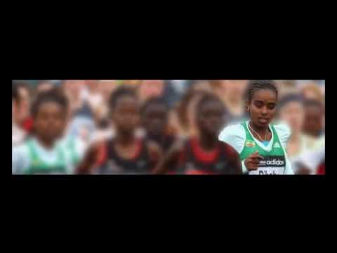 Jimma Video Download - HDRox.Com