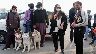 Dog Show in Multan Pakistan 31 January 2021 II Multan Dog Show