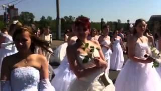 Иваново город невест май 2014