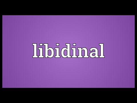 Header of libidinal