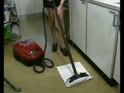 parny čistič profi