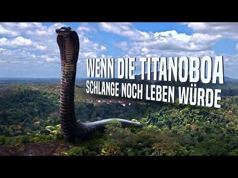 Wenn Die Titanoboa Schlange Noch Leben Würde?