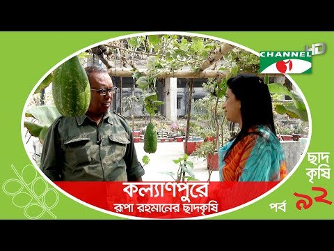Rooftop farming | EPISODE 92 | HD | Shykh Seraj | Channel i | Roof Gardening | ছাদকৃষি |
