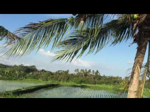 Bali-Lombok Project