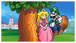 Gambar cover Super Mario 3D Land - Final Castle with Luigi (Alternate Ending)