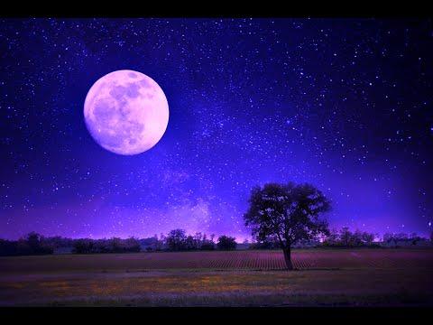 Guided Sleep Meditation + Affirmations: Abundance & Prosperity | Sleep Fast and Easy | Healing Sleep
