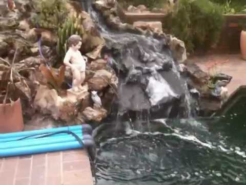 Swimming pool to koi pond conversion 3 of 3 youtube for Pool to koi pond conversion