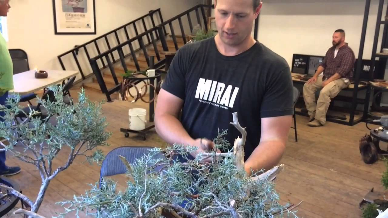 American Bonsai Master Ryan Neil Youtube