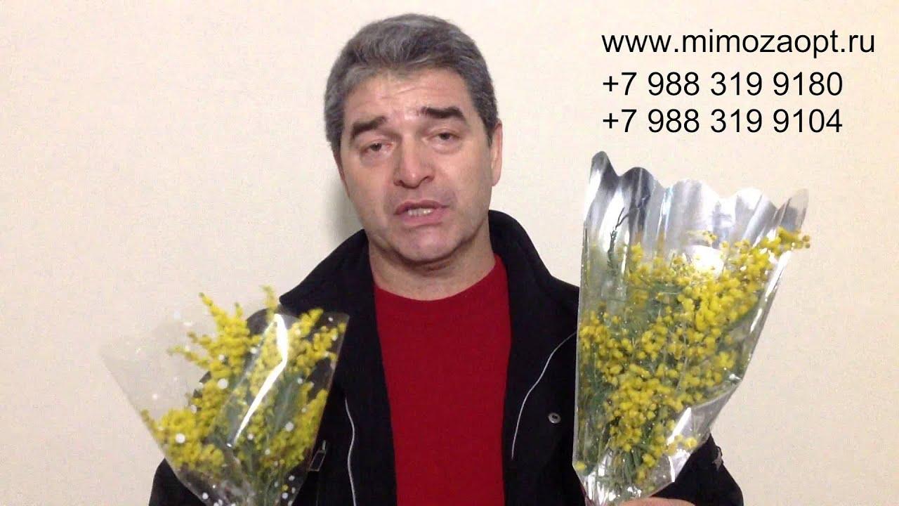Продажа тюльпанов на 8 марта как бизнес. Часть 1. - YouTube