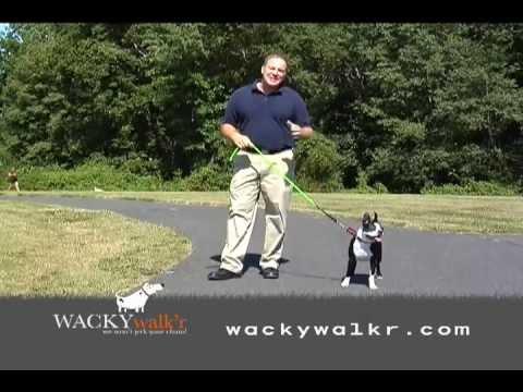 Wacky Walk'r - 3 min full company video