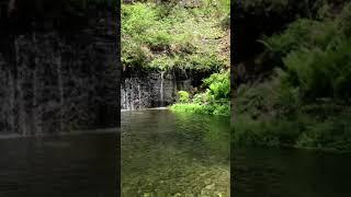 軽井沢白糸滝の動画で涼んでくださいな❣️ thumbnail