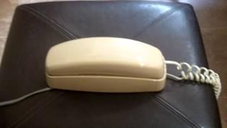 AT&T Bell Trim Line Princess Phone Tan, bone, Desk telephone programable
