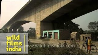 Living Under A Bridge Over The River Ganga In Patna