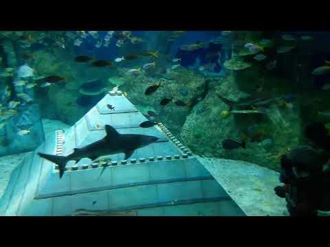 DUBAI LEGOLAND SUBMARINE RIDE