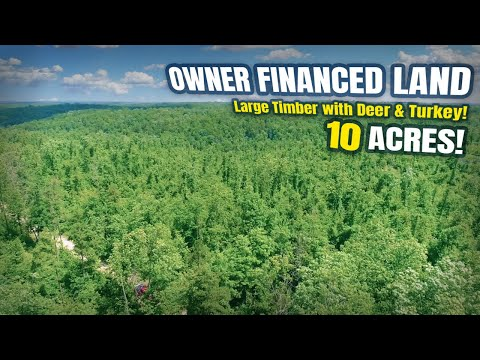 $500 Down Owner Financed Land For Sale In Ozarks! - 10 Acres W/ Deer & Timber! - ID#CB09