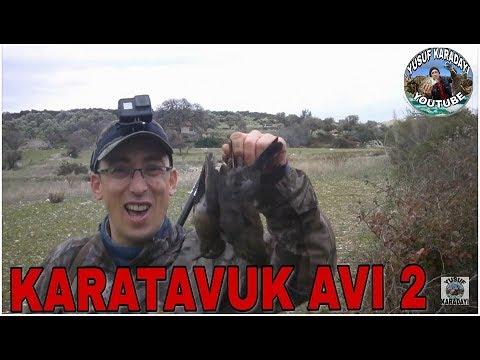 KARATAVUK AVI 2