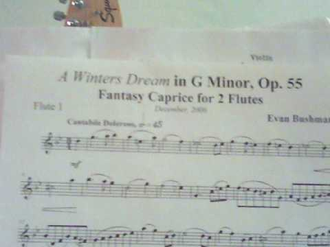 """A Winters Dream"" Op.55 Flute duet Premier"
