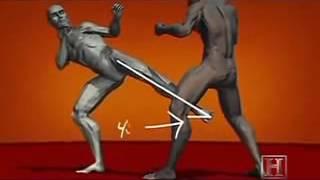tecniche di combattimento mma, kick boxing, muai tha.