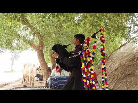 Amazing Rajasthani traditional pungi music