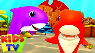 Bayi hiu | Bayi sajak | Lagu anak anak | Kids Tv Indonesia | Kartun anak