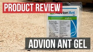 Advion Ant Gel: Product Review