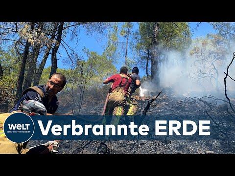 RAUB DER FLAMMEN: Verwüstung - So hart haben die Walbrände die türkische Riviera getroffen
