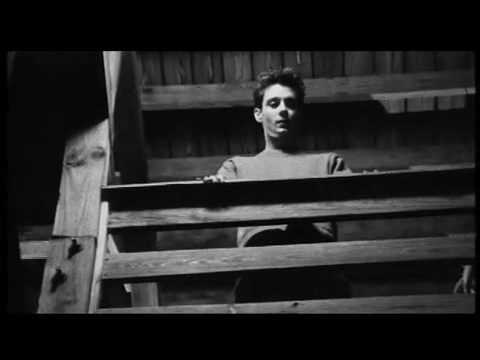 THE LIFE AND TIMES - Tragic Boogie (Official Video)