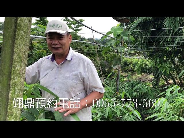 甜籠筍 訂購專線0921-894-378戴先生