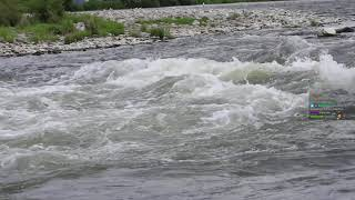 Archiwum strumieni - 5 października 2021 (15:45)