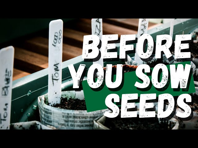 Don't sow your seeds yet | seed viability test and potting soil prep